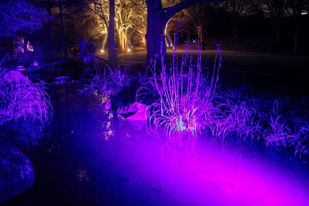Winterlichter2.jpg